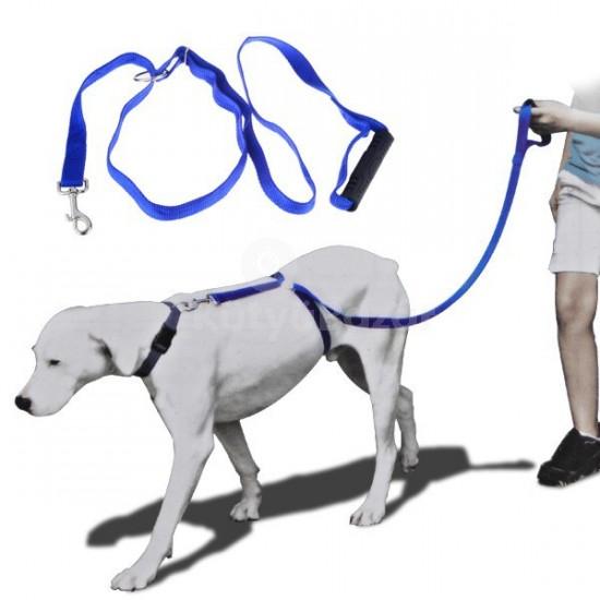 Kutyaoktató hám
