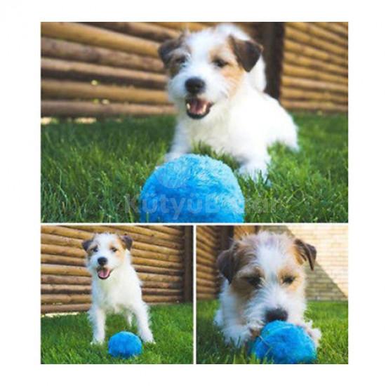 Kutyajáték, kutya labda, interaktív labda kutyáknak