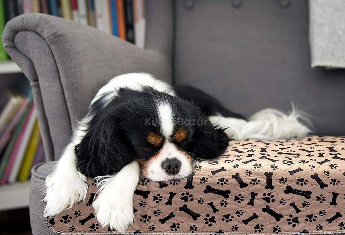 ZEROLEAK PREMIUM újrahasznosítható kutyapelenka