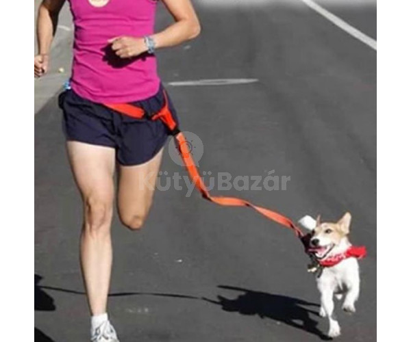 Kutya futtató derék öv