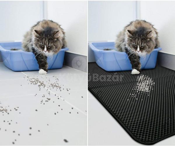 Cica kilépő
