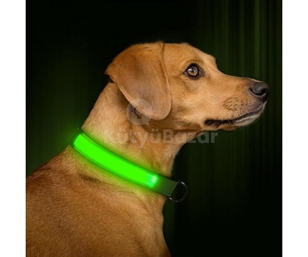 LED kutya nyakörv világító kutyanyakörv