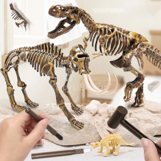 Dinoszauruszos régész készlet