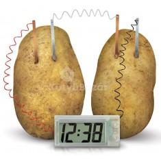 Gyümölccsel működő óra