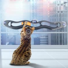 Kreatív cicajáték