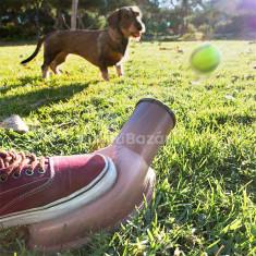 Playdog labdakilövő játék