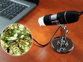 Egy új világ tárul eléd – USB Mikroszkóp