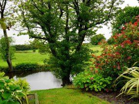 5 hasznos tipp hobbi kertészeknek