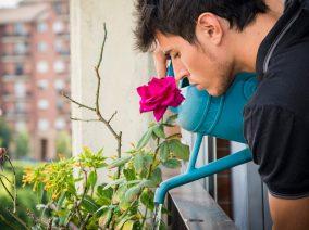 A kütyü, ami figyeli a növényeket helyetted